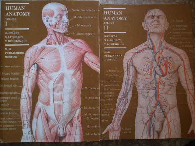 HUMAN ANATOMY VOL.1-2                                                                     ...