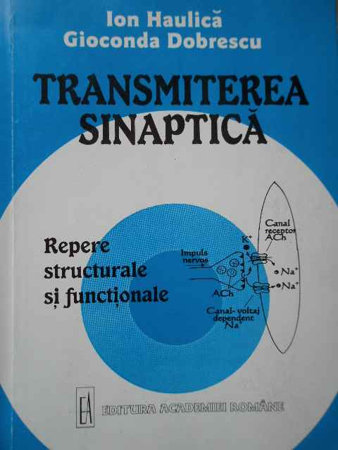 TRANSMITEREA SINAPTICA REPERE STRUCTURALE SI FUNCTIONALE                                  ...