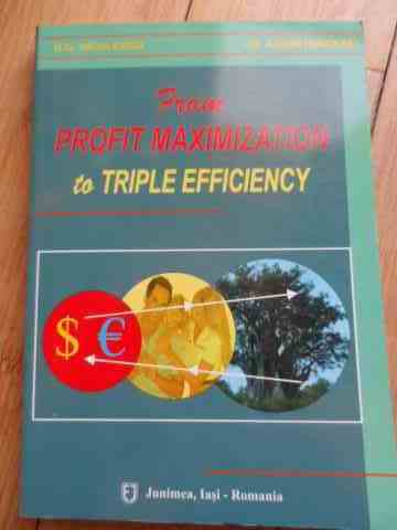 from profit maximizatieon to triple efficiency                                                       n. g. niculescu    i. d. adumitracesei